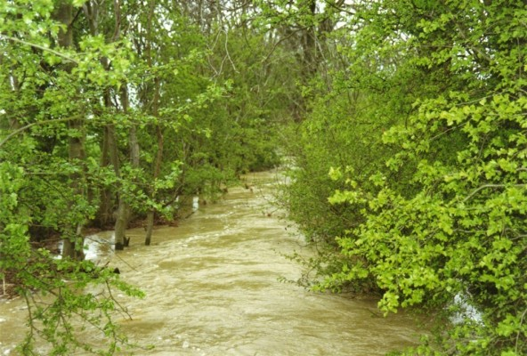 River in flood 1