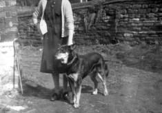Mrs Bateson with dog in Six Bells yard