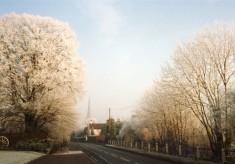 Winter scene - Belvoir Road