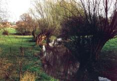 River Devon and Beckingthorpe fields