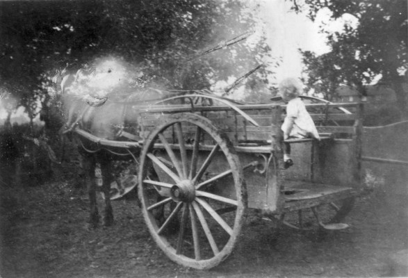 Wendy or Gina Topps on a cart in Daybell's farm yard Bottesford
