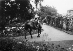Horse and rider on path in formal gardens