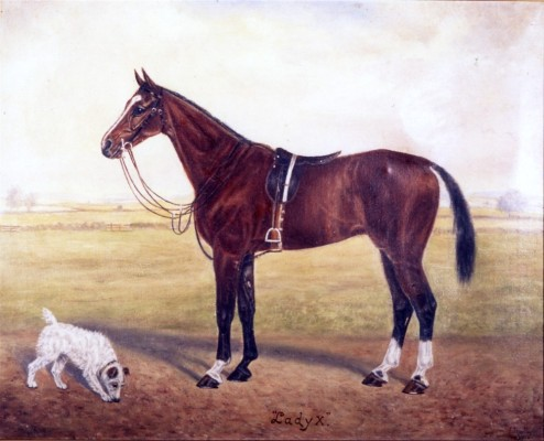 Painting of racehorse 'Lady X'