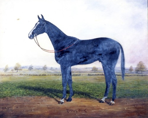 Painting of racehorse 'Common Good'