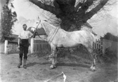Mr George Marsh and his white horse