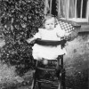 A baby in her high chair at The Elms