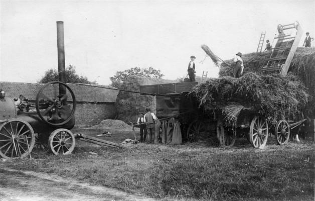 The steam threshing machine at work