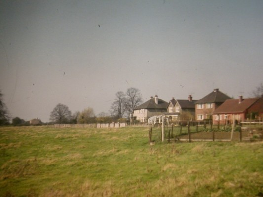 Pasture at Beckingthorpe, with first post-war houses opposite station