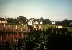 Carter family garden, cows in pasture beyond