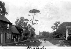 Albert Street - postcard c.1890