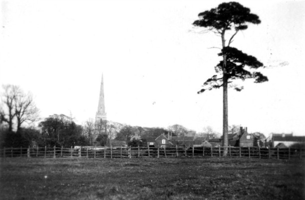 View E from S end Albert St c.1890