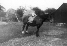 Michael Calcraft on horse at Sykes Lane Farm, Muston