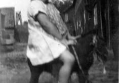 Bolland family album picture 20