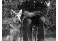 Sergeant Bradshaw and police dog Linda