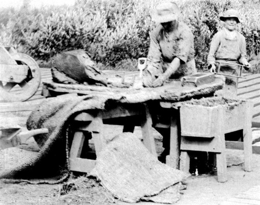 Shaping the Clay