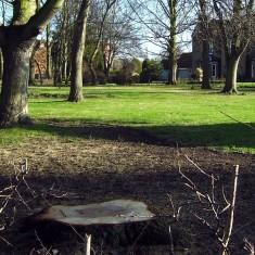 Beckinthorpe House, January 2008