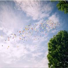 Balloon Race