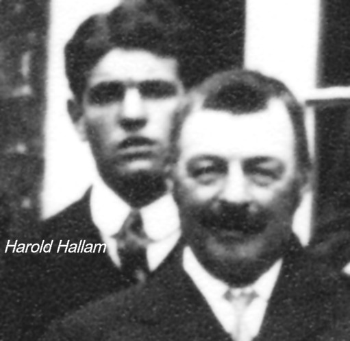 harold johnson from ireland