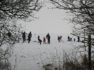 Beacon Hill, Feb 2nd 2009