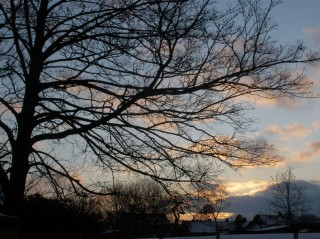 Bottesford sunset, Feb 3rd 2009
