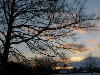 Bottesford sunset, Feb 3rd 2009