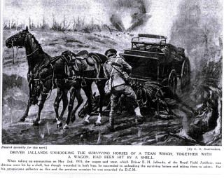 Driver Jallands unhooking the surviving horses of a team which together with a wagon had been hit by a shell.  When taking up ammunition on May 2nd 1915, the wagon and team which Driver E. H, Jallands of the Royal Field Artillery, was driving were hit by a shell, but though wounded in both legs, he succeeded in unhooking the surviving horses and taking them to safety. For his conspicuous gallantry on this an the previous occasion he was awarded the D.C.M.
