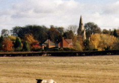 A Muston gallery