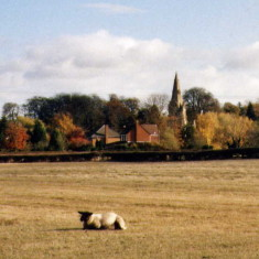 Muston church from Easthorpe Lane
