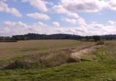 Ancestral Acres