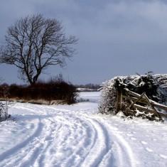 Normanton, Dec. 2010