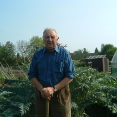 George Pearson, a retired farmer in his allotment at Bottesford.