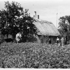 Locality (16). An old picture of the Thatch Cottage.