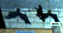 'and a couple of bats'