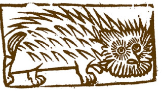 Woodcut illustration of a hedgehog (hedgepig!) familiar from the chapbook