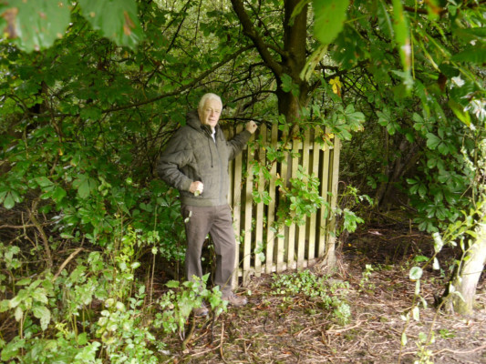 Mr Rose standing by the small fenced enclosure around the stem of the horse chestnut at the site of the 'bush', August 2013.