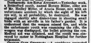 Article from the Grantham Journal, 8/8/1914: Horace Miller airgun pellet accident. | British Newspaper Archive