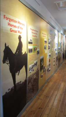 Leicestershire County Council's Display 'Forgotten Heroes: Horses in the Great War' at the Museum of the Horse Tuxford | BCHG (DM)