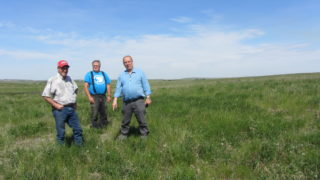Ken Sinclair, Bob White and Bill Pinfold indicate their near-certainty that they have located the homestead of Frank Raithby   David Middleton 2017