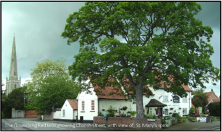 Farewell to the Red Lion?   Bottesford Local Heritage Archive