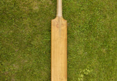 Dan Daybell's cricket bat, 1890 (four pictures)