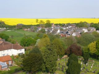 Oil-seed rape crop on Beacon Hill, seen from the church tower ('Holliers'), 2007.            | Neil Fortey.