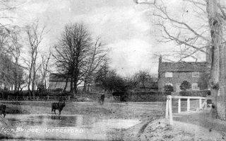 A cow stands at the ford at Rectory lane, with Providence Cottage in the background.