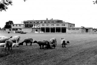 Bottesford's new Secondary School under construction, 1959.  From the collection of Mr. W.J. Roberts, the builder. | Bottesford Local History Archive, copyright Ted Rayson.