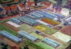 A painting showing an aerial view of The Vineries