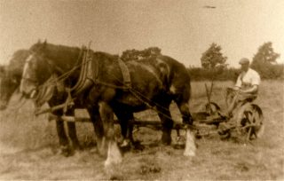 Horse power at work, pre-Second World War. | Bottesford Local History Archive