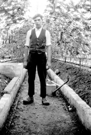 Mr Frank Wilkinson working in the cucumber house at The Vineries, 1930s.   Bottesford Local History Archive