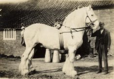 """Ponton Pioneer"" at Poplar Farm, Plungar"