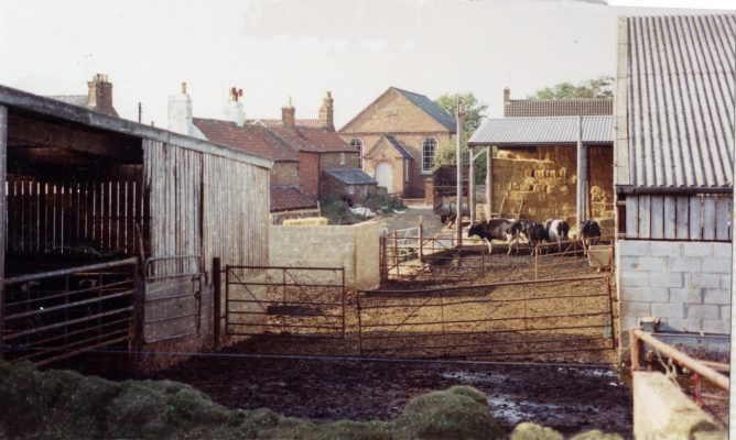 In the yard at Pasture Farm, Plungar