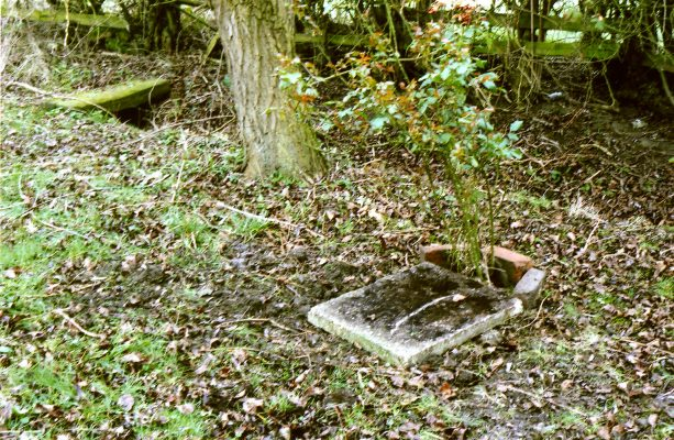 Believed to be grave where Ronald Damms were interred in 2004. | Margaret Langton