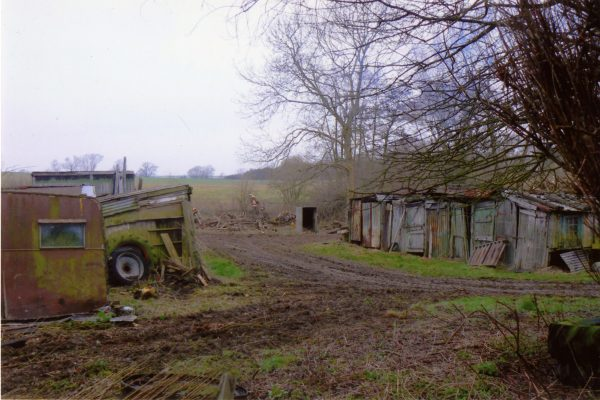 With the undergrowth cleared, you can clearly see the two rows of sheds. | Margaret Langton